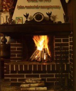 Drewno jako materiał energetyczny