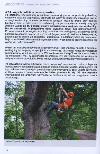 Arborystyka - podręcznik bezpiecznej pracy II