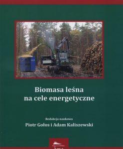 Biomasa leśna na cele energetyczne