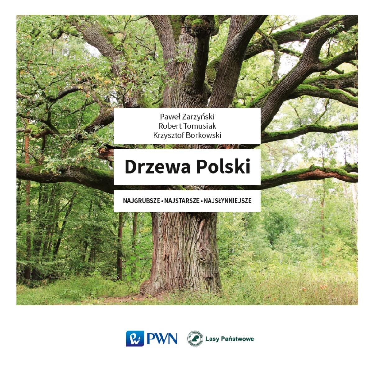 Drzewa Polski - Najgrubsze Najstarsze Najsłynniejsze