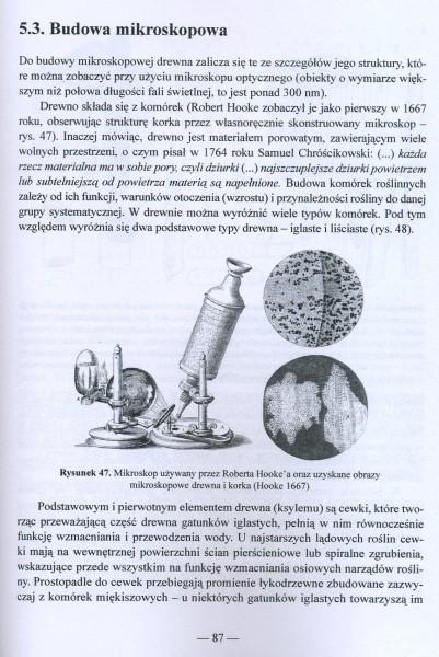 Klimat a drewno zabytkowe - dawna i współczesna wiedza o drewnie