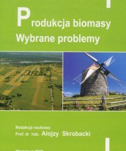 Produkcja biomasy - Wybrane problemy