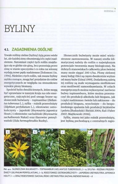 Wieloletnie rośliny energetyczne