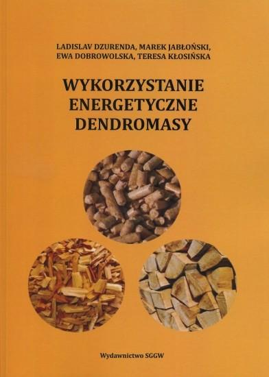 Wykorzystanie energetyczne dendromasy