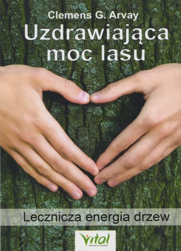 Uzdrawiająca moc lasu - Lecznicza energia drzew