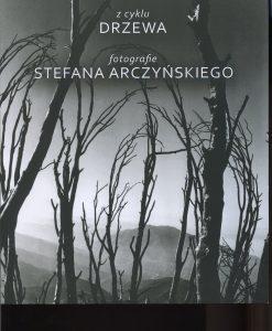 Z cyklu drzewa - Fotografie Stefana Arczyńskiego