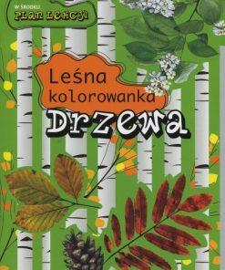 Leśna kolorowanka - drzewa