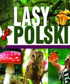 lasy-polski